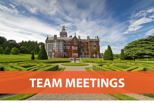 EVENT TYPE TEAM-MEETINGS